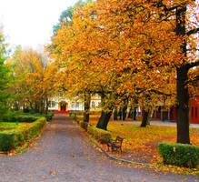 orange park by EtanOlka