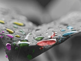 Drops of a Rainbow by phoelixde
