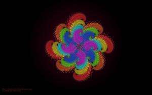 Rainbow Flower by msahluwalia