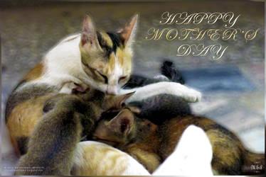 Happy Mother's Day (MP00015) by msahluwalia