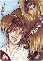 Luke and Chewie by britbrakdown