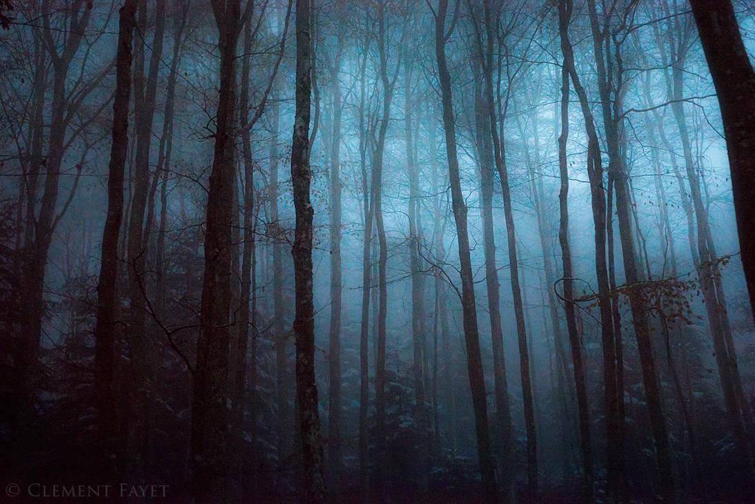 Nightsilver Woods by LG77