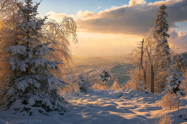 Sweet Winter Times by LG77