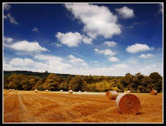 Hay Bales by FreddyC
