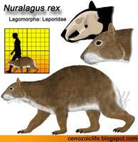 Nuralagus rex by CenozoicKing