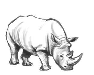 Rhino by RamonaForever