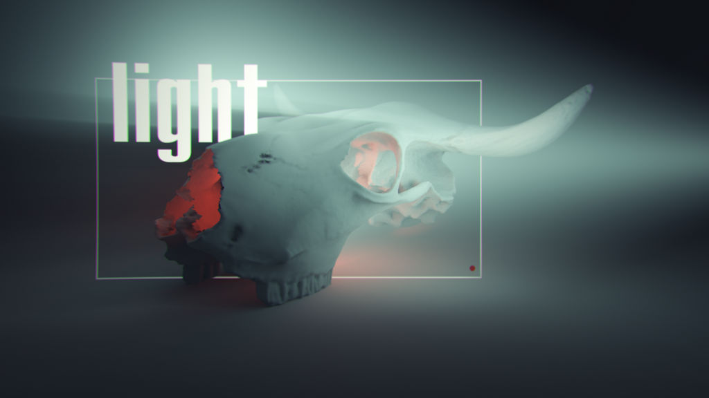 Skull and light by ZimOby