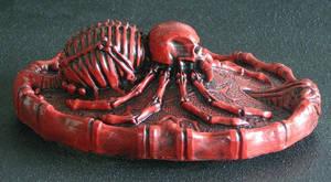arachnid  spider  Black Widow tarantula  skull red by JanuszDolinski