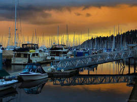 Shilshole Marina by MacroMagnificent
