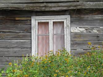 old window by libellule64wazka