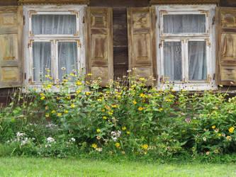 dwa okienka i kwiatki by libellule64wazka