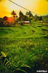 Nan Jauah Di Mato by AuliaWijaya
