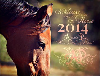 Happy New Year the Year Of the Horse by BlueBird-Stock