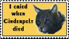 I cried when Cinderpelt by SweetSuicune2000
