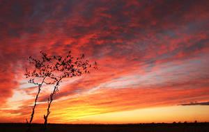 Sunset by sergey1984