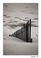 Dunes by sergey1984