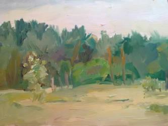 Landscape study by sergey-ptica
