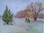 Winter path by sergey-ptica