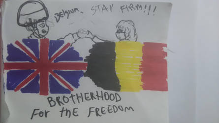 Belgium.....will defend your!!!! by EDUARDOOREJUELA