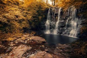 Glenariff Forest Park by Squirrelondope