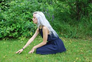 Silver Girl 10 - stock by Mirish