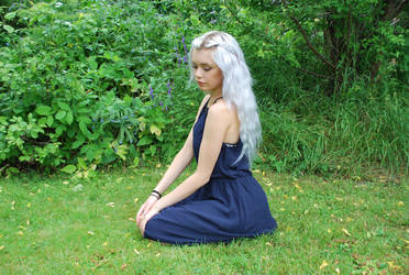 Silver Girl 11 - stock by Mirish