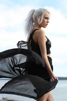 Black Cat 7 - stock by Mirish