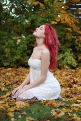 Autumn 1 - stock by Mirish