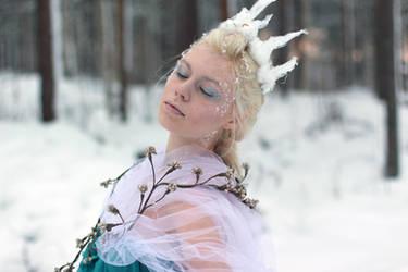 Ice Queen - stock 2 by Mirish