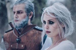 The Witcher - The Wolf and the Swallow by Mirish