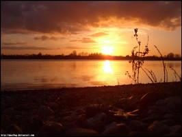 lake sunset 1 by meatbug