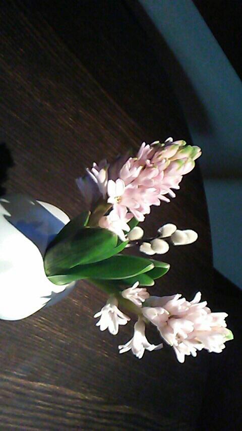 Flowers X3 by HeyouPikachu123
