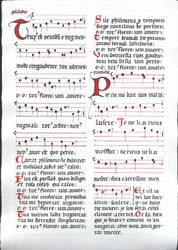 Tempus est iocundum / Pour coi me bait mes maris by Pietrach