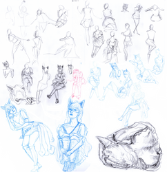 evolution sketch III by chat-de-gouttiere