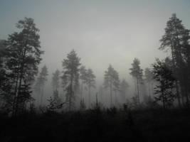 Shrouded in Mist by Napskaakka
