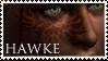Calenhad Hawke Fan Stamp by BucklesInTheSun