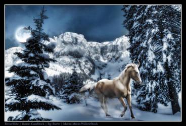 Winter's breath by RoverBlitz