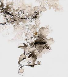 ivy by PaulMacManus