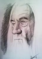 Gandalf The White by phantomphreaq
