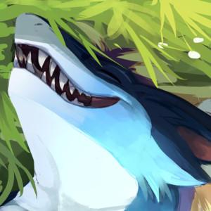 teryxc's Profile Picture