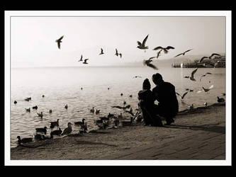 seawings by ALPAGO