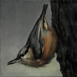 Bird 11 by trulsespedal