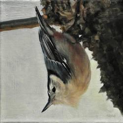 Bird 7 by trulsespedal