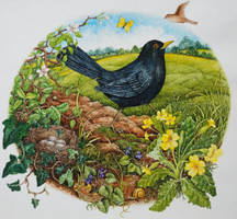 Blackbird by SilentEyes28