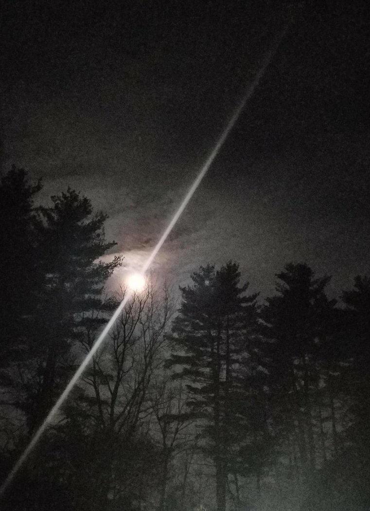 Flare By Wolfsbane6-dc9vnp7 by kafka47ca