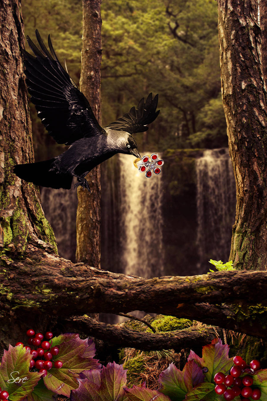 Magpie by Olgola