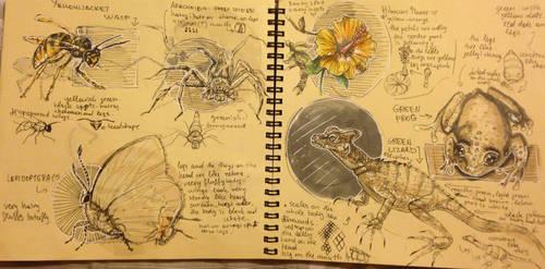 Dynamic sketching 11 by MiamoryHJ