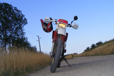 Another picture of my bike by Shamanez