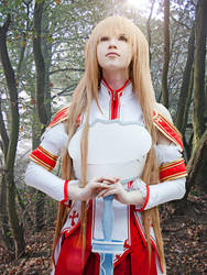Sword Art Online: Path to Hope by Seranaide