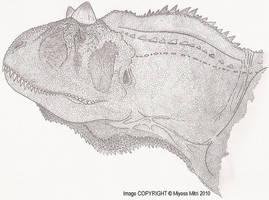 Carnotaurus sastrei bust by Miyess